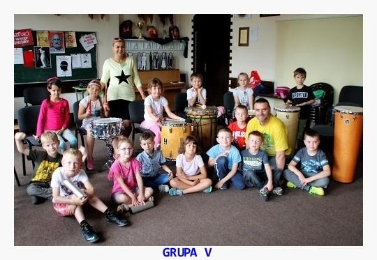 Grupa V