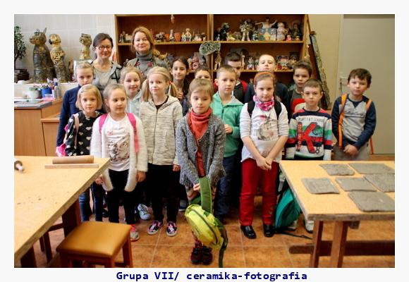 Grupa VII